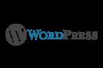 WordPress-Flare-Web-Design